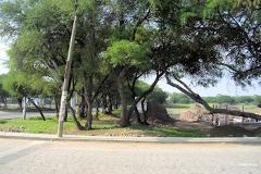 Foto de terreno habitacional en venta en  , el sáuz, tequisquiapan, querétaro, 2569396 No. 01
