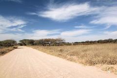 Foto de terreno habitacional en venta en  , el sáuz, tequisquiapan, querétaro, 3161630 No. 01
