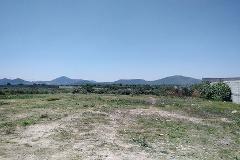 Foto de terreno comercial en venta en  , el toro pinto, ezequiel montes, querétaro, 3339873 No. 01