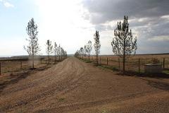 Foto de terreno habitacional en venta en emiliano rangel , la estación, aguascalientes, aguascalientes, 2437999 No. 01
