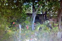 Foto de terreno habitacional en venta en  , enrique cárdenas gonzalez, tampico, tamaulipas, 3860908 No. 01