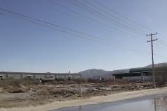 Foto de terreno habitacional en renta en  , ferropuerto, torreón, coahuila de zaragoza, 1655459 No. 01