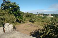 Foto de terreno habitacional en venta en fraccionamiento de parcela 5 htv1857e 0, lindavista, pueblo viejo, veracruz de ignacio de la llave, 2766399 No. 01