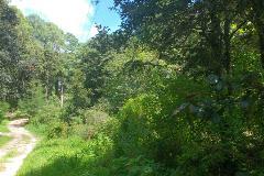 Foto de terreno habitacional en venta en fraccionamiento las flores s/n , san felipe ecatepec, san cristóbal de las casas, chiapas, 4037647 No. 01