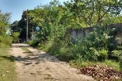 Foto de terreno comercial en venta en  , francisco medrano, altamira, tamaulipas, 2342318 No. 04