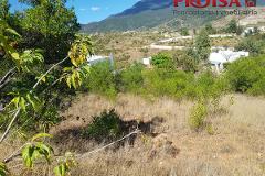 Foto de terreno habitacional en venta en  , guadalupe victoria, oaxaca de juárez, oaxaca, 1363081 No. 01