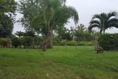 Foto de rancho en venta en  , hidalgo, pueblo viejo, veracruz de ignacio de la llave, 3903843 No. 01