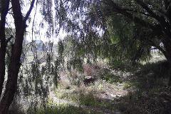 Foto de terreno habitacional en venta en  , huehuetoca, huehuetoca, méxico, 3637807 No. 01