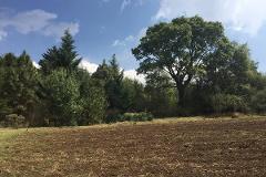 Foto de terreno habitacional en venta en  , huitzilac, huitzilac, morelos, 3722748 No. 01