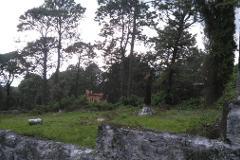 Foto de terreno habitacional en venta en  , huitzilac, huitzilac, morelos, 4670771 No. 02