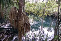 Foto de rancho en venta en  , inalámbrica, mérida, yucatán, 0 No. 01