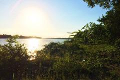 Foto de terreno habitacional en venta en  , isla de juana moza, tuxpan, veracruz de ignacio de la llave, 2565405 No. 01