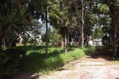 Foto de terreno habitacional en venta en  , ixtapaluca centro, ixtapaluca, méxico, 3013059 No. 01