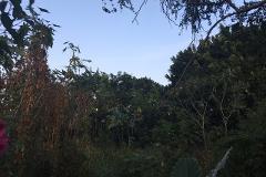Foto de terreno habitacional en venta en  , ixtlahuacan, yautepec, morelos, 4392622 No. 01