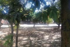 Foto de terreno habitacional en venta en  , ixtlahuacan, yautepec, morelos, 4607649 No. 01