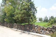 Foto de terreno comercial en venta en jose martin 0, la cruz, tezontepec de aldama, hidalgo, 1009631 No. 01