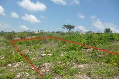 Foto de terreno habitacional en venta en . , joyas del campestre, tuxtla gutiérrez, chiapas, 4514530 No. 01