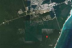 Foto de terreno habitacional en venta en kukulkan calle 57 57, tulum centro, tulum, quintana roo, 4653230 No. 01