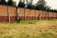 Foto de terreno comercial en venta en  , la concha, xochimilco, distrito federal, 1554570 No. 01