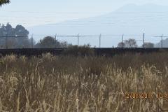 Foto de terreno habitacional en venta en la felicidad , san miguel ajusco, tlalpan, distrito federal, 0 No. 01