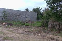 Foto de terreno comercial en venta en  , la pedrera, altamira, tamaulipas, 0 No. 01