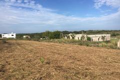 Foto de terreno habitacional en venta en  , la rivera, tampico alto, veracruz de ignacio de la llave, 0 No. 01