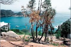 Foto de terreno habitacional en venta en la roqueta 30, las playas, acapulco de juárez, guerrero, 3760428 No. 01