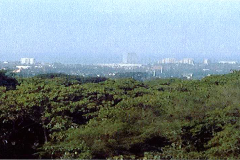 Foto de terreno habitacional en venta en  , la vista, puerto vallarta, jalisco, 2361828 No. 01