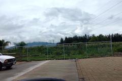 Foto de terreno habitacional en venta en  , las delicias, zamora, michoacán de ocampo, 3963665 No. 01