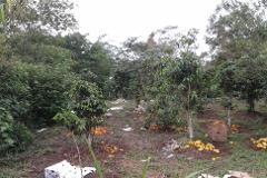 Foto de terreno habitacional en venta en  , las fuentes, xalapa, veracruz de ignacio de la llave, 2332620 No. 01