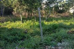 Foto de terreno habitacional en venta en  , las margaritas de cholul, mérida, yucatán, 4222419 No. 01