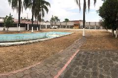 Foto de casa en renta en  , lázaro cárdenas, jiutepec, morelos, 0 No. 01