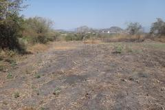 Foto de terreno habitacional en venta en - -, lázaro cárdenas, xochitepec, morelos, 4606242 No. 01