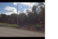 Foto de terreno comercial en venta en  , leona vicario, benito juárez, quintana roo, 3256736 No. 01