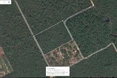 Foto de terreno comercial en venta en  , leona vicario, othón p. blanco, quintana roo, 4521407 No. 01