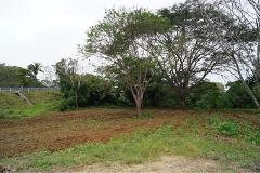 Foto de terreno habitacional en venta en localidad rincon 0, río jamapa, boca del río, veracruz de ignacio de la llave, 0 No. 01