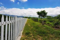 Foto de terreno habitacional en venta en los cedros, lote 1, manzana 15 1, terán, tuxtla gutiérrez, chiapas, 3751398 No. 01