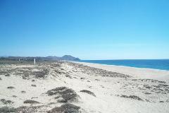 Foto de terreno habitacional en venta en los cocos 12, el pescadero, la paz, baja california sur, 4573139 No. 01