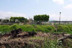 Foto de terreno habitacional en venta en  , los espinos, zamora, michoacán de ocampo, 3841111 No. 05
