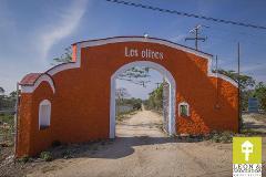 Foto de terreno habitacional en venta en cr. istmo kilometro 130 lote 10 fraccion 1 , los olivos, coacalco de berriozábal, méxico, 2535633 No. 01