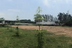 Foto de terreno habitacional en renta en los pinos 710, ricardo flores magón, ciudad madero, tamaulipas, 2651559 No. 01