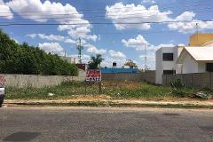Foto de terreno habitacional en venta en  , los pinos, mérida, yucatán, 3371651 No. 01