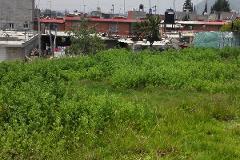 Foto de terreno habitacional en venta en lote de terreno , la magdalena, ixtapaluca, méxico, 4571447 No. 01