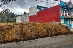 Foto de terreno habitacional en venta en  , luz del barrio, xalapa, veracruz de ignacio de la llave, 3874743 No. 01