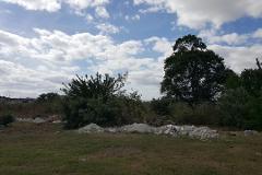 Foto de terreno industrial en venta en  , mayapan, mérida, yucatán, 4361288 No. 01
