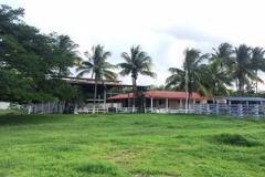 Foto de rancho en venta en  , merida centro, mérida, yucatán, 3858788 No. 01