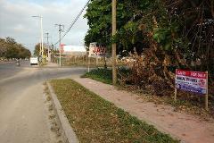 Foto de terreno comercial en venta en  , milenio, othón p. blanco, quintana roo, 3282995 No. 01