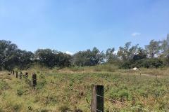 Foto de terreno habitacional en renta en  , miramapolis, ciudad madero, tamaulipas, 3736471 No. 01