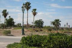 Foto de terreno habitacional en venta en  , montebello, torreón, coahuila de zaragoza, 401243 No. 01