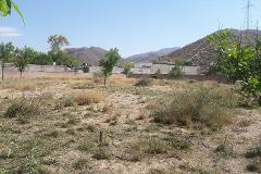 Foto de terreno habitacional en venta en nazareno , villa de guadalupe, lerdo, durango, 0 No. 01